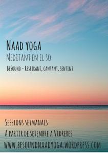 Naad YogaMeditació en el so